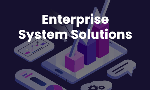ENTERPRISE SYSTEM SOLUTIONS
